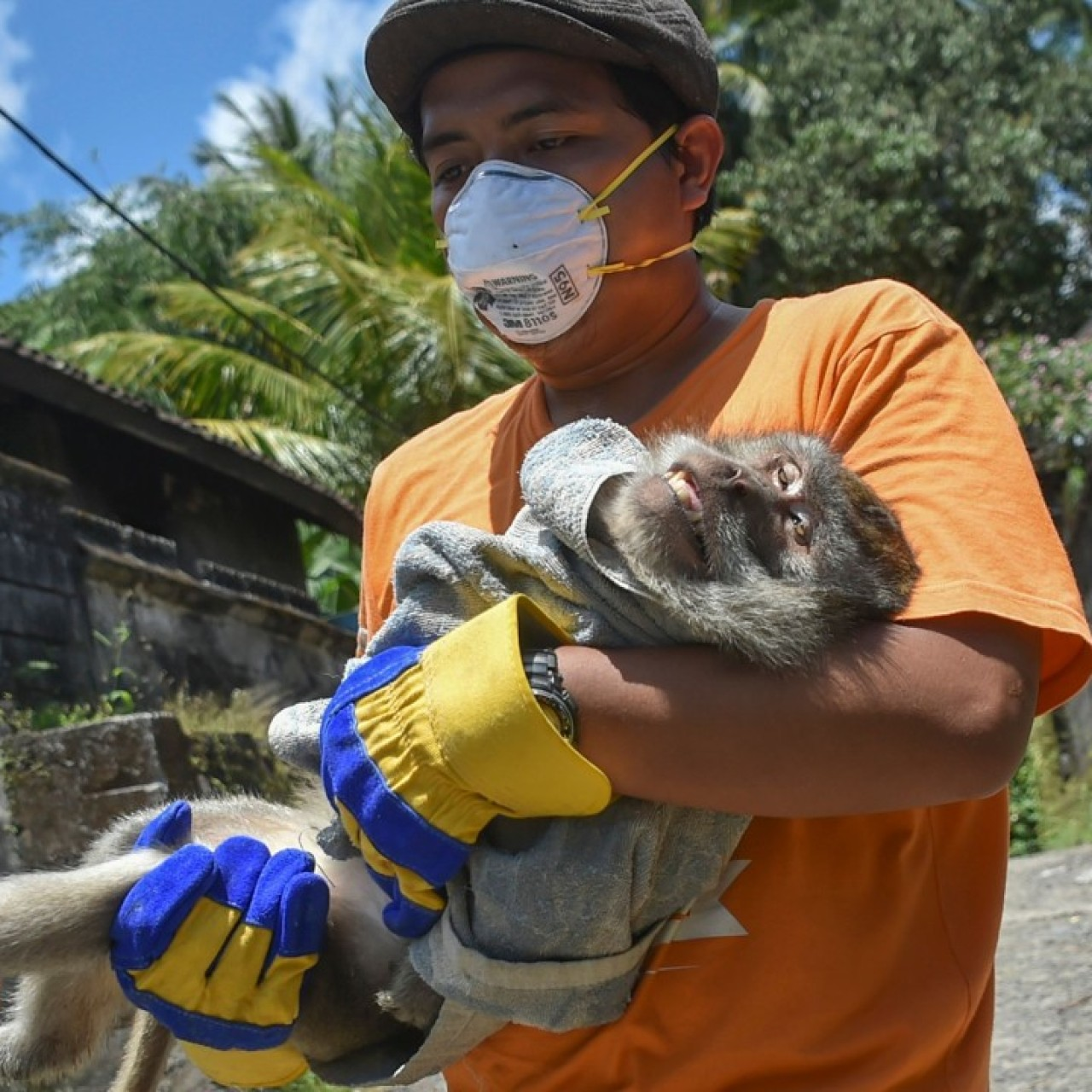 Bali authorities urge evacuees from outside Mount Agung volcano