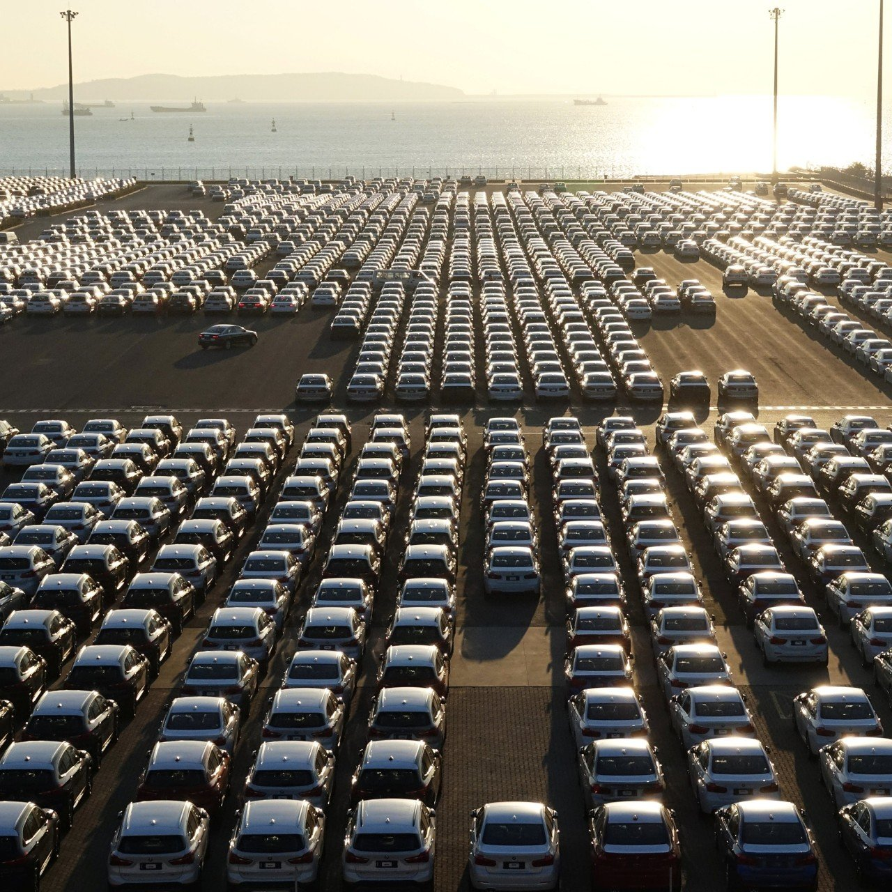 China's January passenger car sales in biggest drop in seven